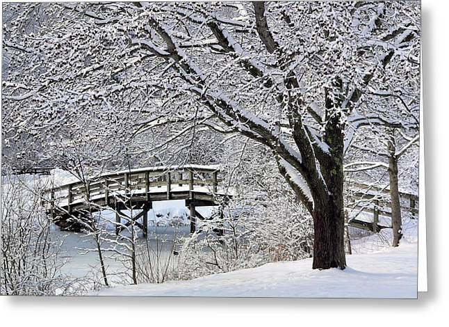 Greeting Card featuring the photograph Winter Wonderland by Janice Drew