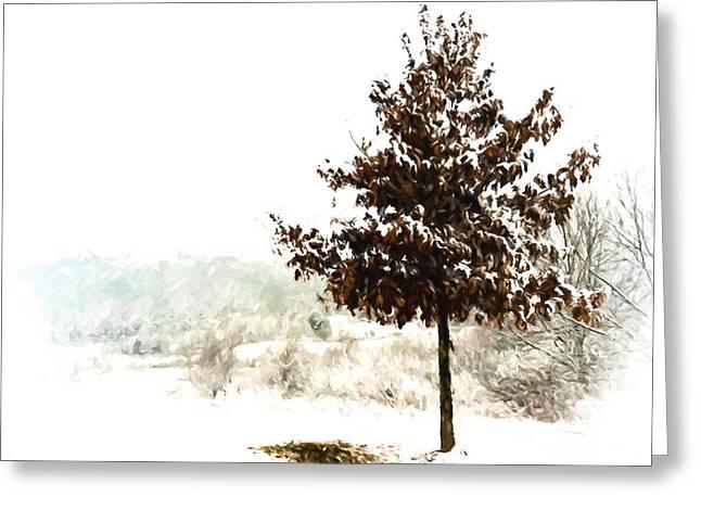 Winter Wonderland  Greeting Card by Kerri Farley