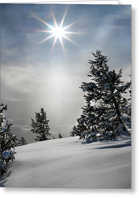 Winter Wonderland Greeting Card by Leland D Howard
