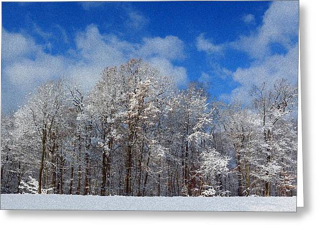 Winter Wonderland Greeting Card by Lorna Rogers Photography