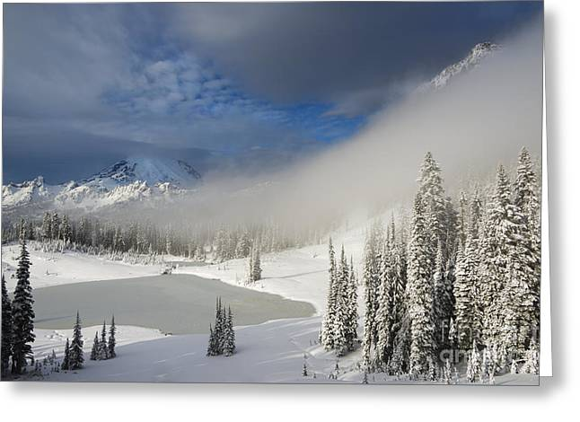 Winter Wonderland Greeting Card by Mike  Dawson