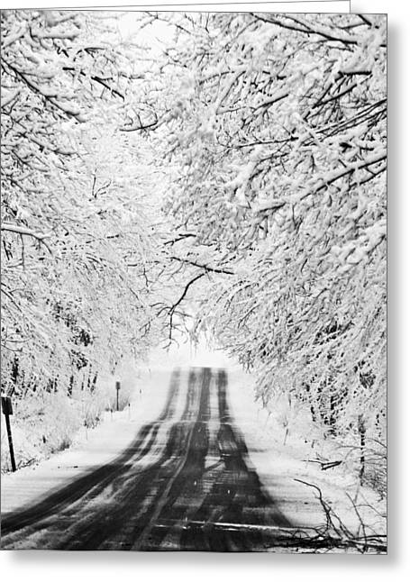Greeting Card featuring the photograph Winter Wonderland by Ricky L Jones