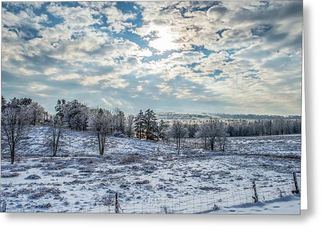Winter Wonderland Greeting Card by Tim Sullivan