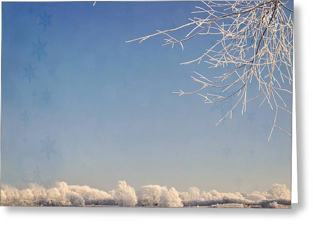 Winter Wonderland With Snowflakes Decoration. Greeting Card by Lyn Randle