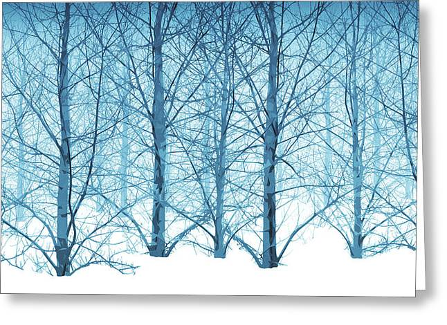 Winter Woodland In Blue Greeting Card