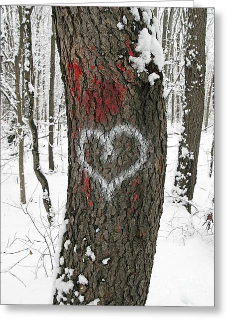 Winter Woods Romance Greeting Card by Ann Horn