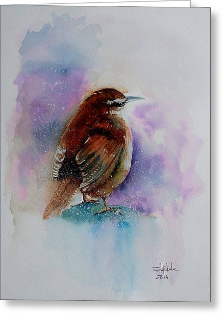 Winter Wren Greeting Card by Isabel Salvador