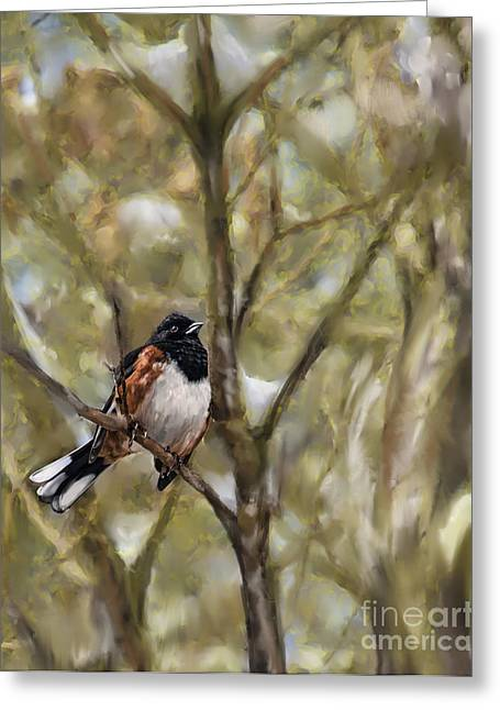Winterbird Greeting Card