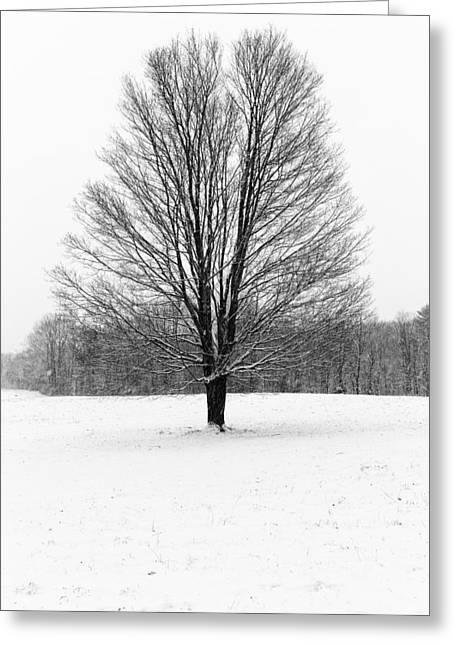 Winterclove Greeting Card by Rick Berk