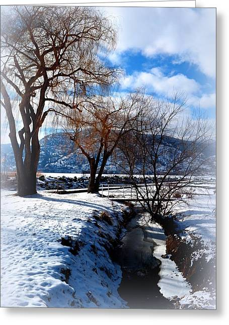 Wintercreek 2/8/2014  Greeting Card