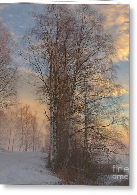 Winterday Greeting Card by Sylvia  Niklasson