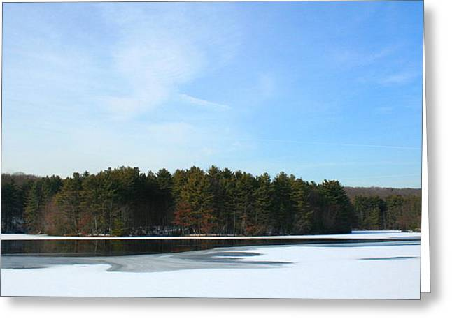 Wintergreen Winterfrost Greeting Card by Stephen Melcher