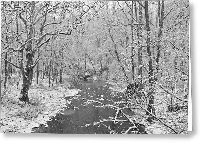 Winterlake Greeting Card by Nancy Edwards