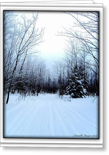 Winterlude In Abitibi Temiscamingue Quebec  Greeting Card by Danielle  Parent
