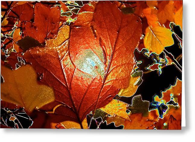 winters autumn in Pasadena Greeting Card