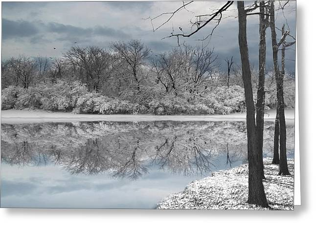 Winters Delight 6 Greeting Card
