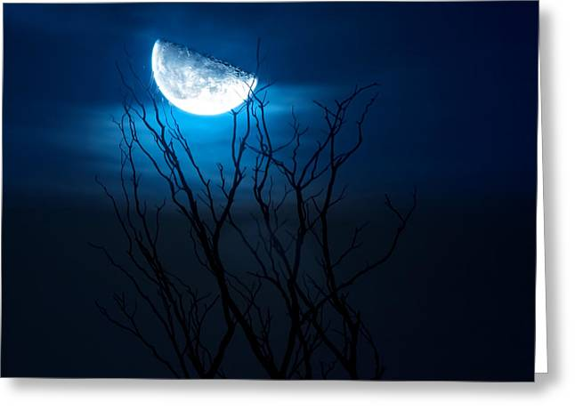 Winter's Eve Moon Greeting Card