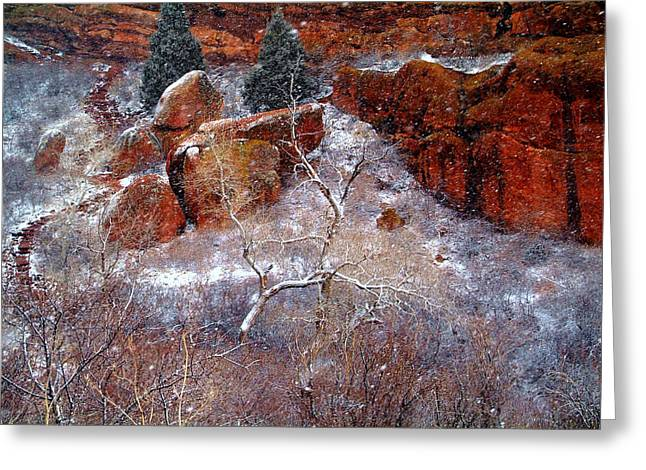 Winters Intrigue.. Greeting Card by Al  Swasey