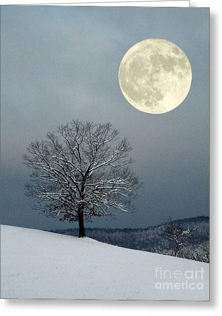 Winter's Moon Greeting Card