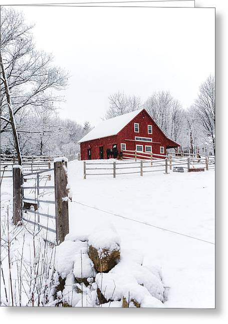 Winter's Morning Greeting Card by Robert Clifford