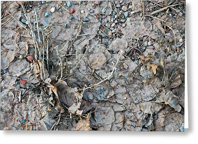 Greeting Card featuring the photograph Winter's Mud by Allen Carroll