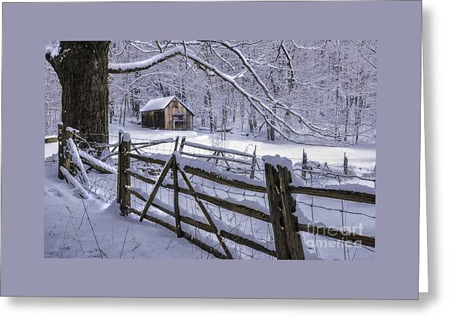 Winter's Mystique   Greeting Card