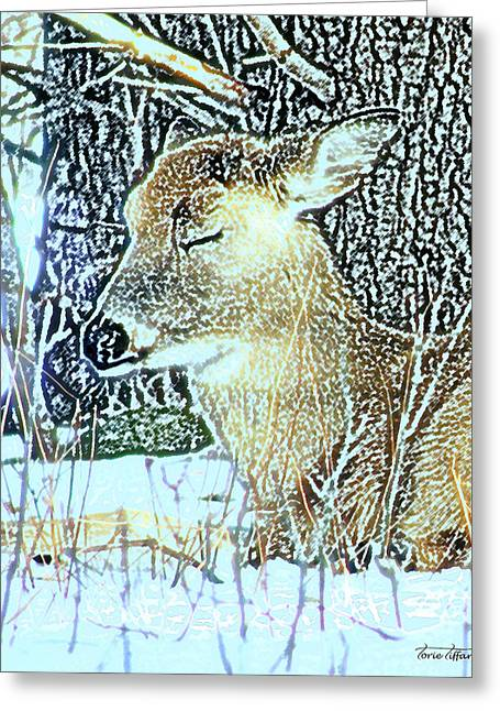 Winter's Nap Greeting Card by Torie Tiffany