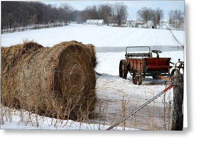 Greeting Card featuring the photograph Winter's Rest by Linda Mishler