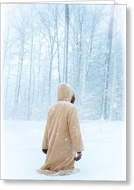 Winter's Tale Greeting Card by Edward Fielding