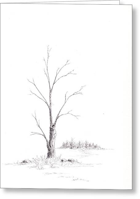 Winter's Tree Greeting Card