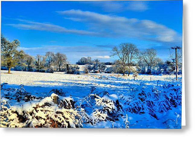 Winters View Greeting Card by Dave Woodbridge