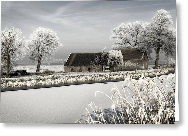 Greeting Card featuring the photograph Winterwonderland by Michel Verhoef