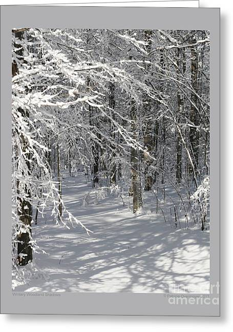 Wintery Woodland Shadows Greeting Card by Patricia Overmoyer