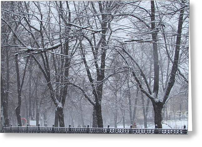 Wintry Greeting Card by Anna Yurasovsky
