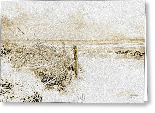 Wintry Day At The Beach  Greeting Card by Julie Palencia