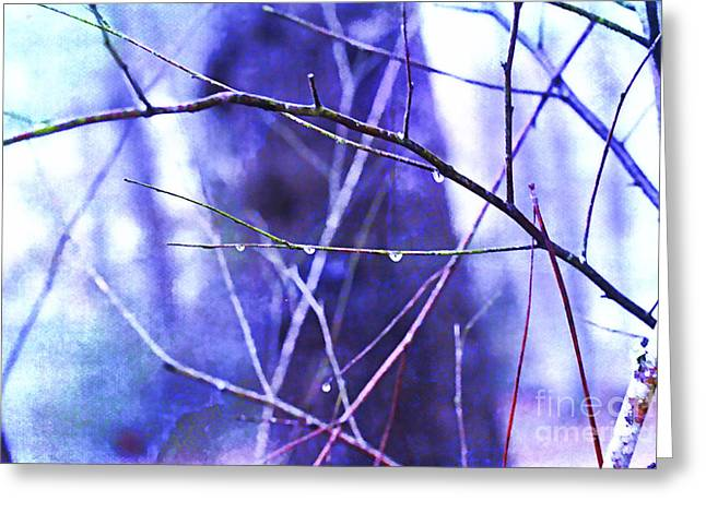 Wintry Greeting Card by Judi Bagwell