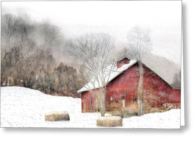 Wintry Mix Greeting Card