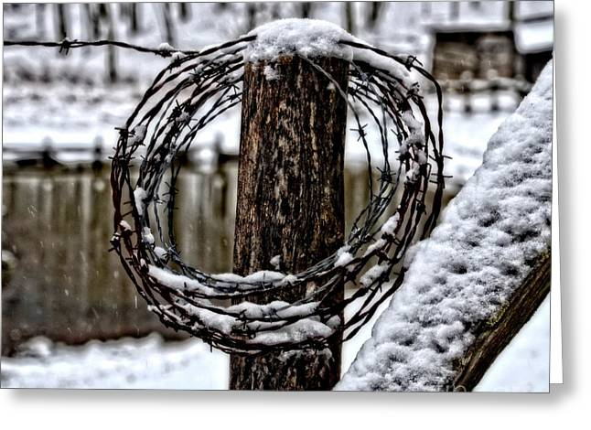 Greeting Card featuring the photograph Wired by Brenda Bostic