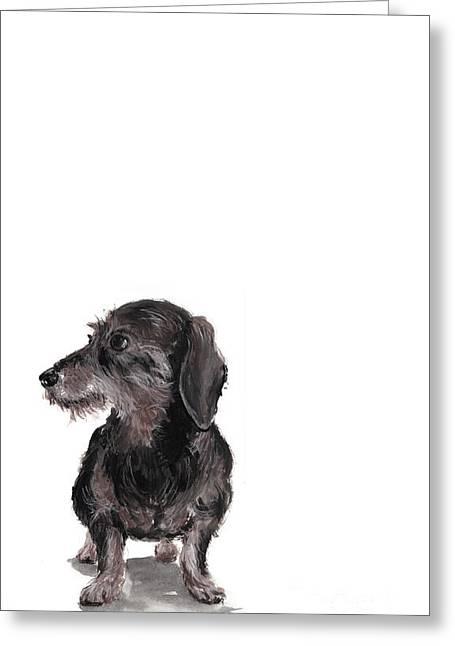 Wirehaired Dachshund - Rauhaardackel Greeting Card by Barbara Marcus