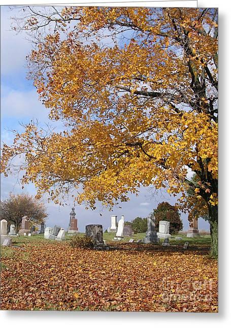 Wisconsin Boneyard 2 Greeting Card by James T