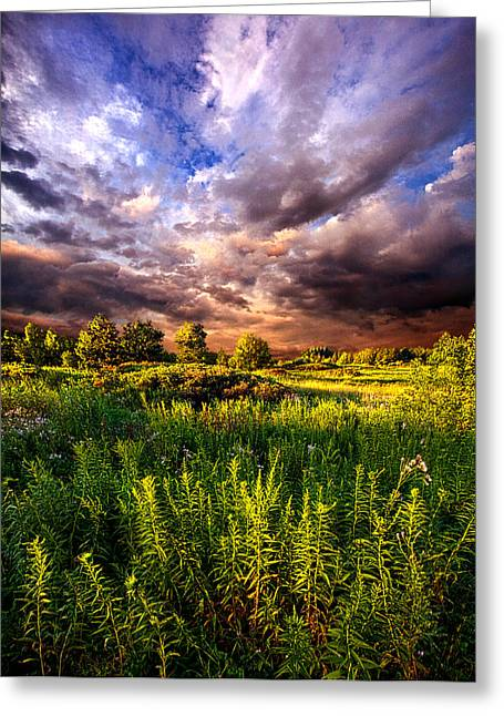Wisconsin Ventures Greeting Card by Phil Koch