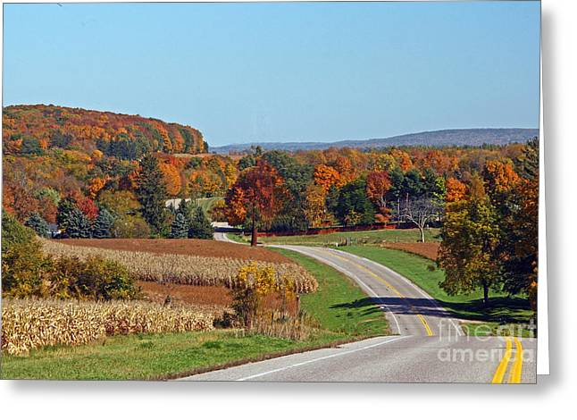 Wisconsin's Fall Color Greeting Card by Joan McArthur