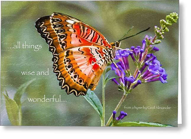 Wise And Wonderful Greeting Card by Karen Stephenson