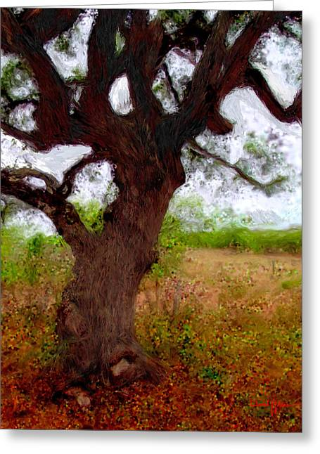 Da214 Wise Old Tree By Daniel Adams Greeting Card