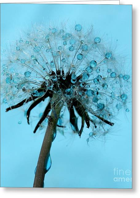 Wish In Blue Greeting Card