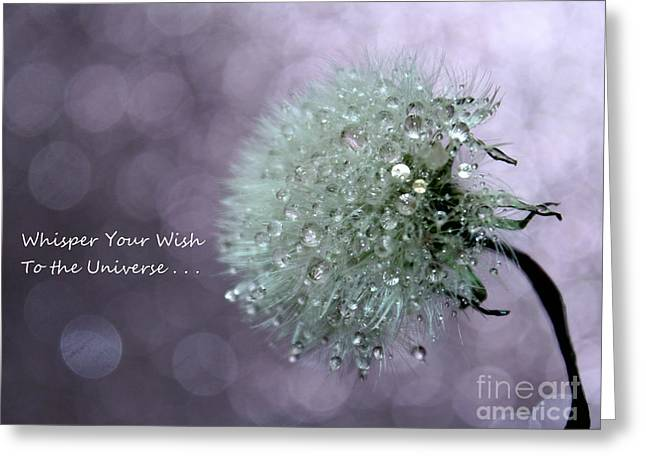 Wish To The Universe Greeting Card