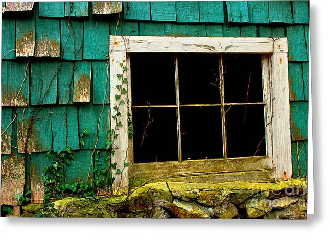 Wishes Through The Window Greeting Card by Michael Eingle