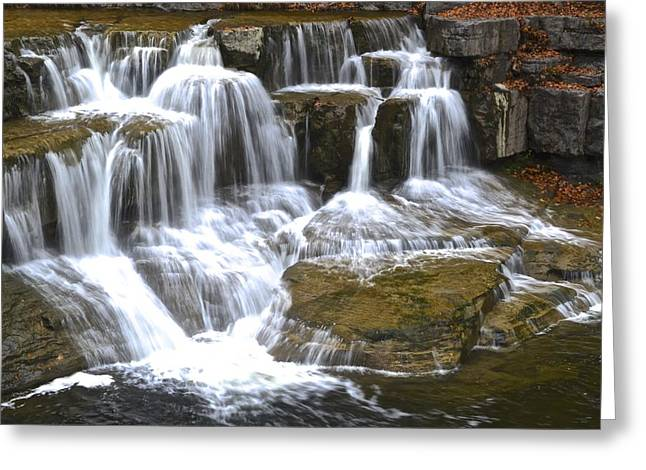 Wishy Washy Greeting Card by Frozen in Time Fine Art Photography