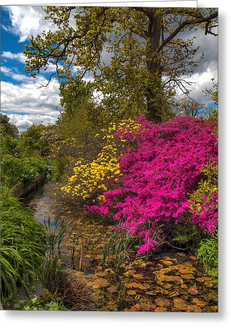 Greeting Card featuring the photograph Wisley Garden by Ross Henton