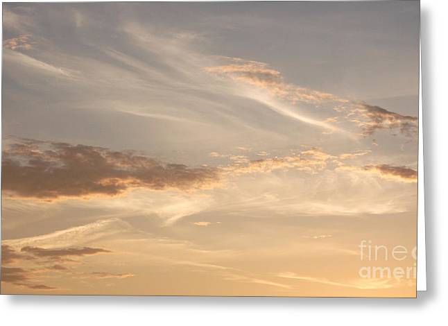 Greeting Card featuring the photograph Wispy Sunset by Debi Dmytryshyn
